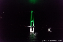 Den Grønne Pylon