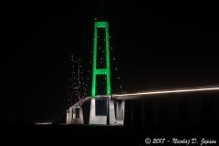 Den grønne bro.